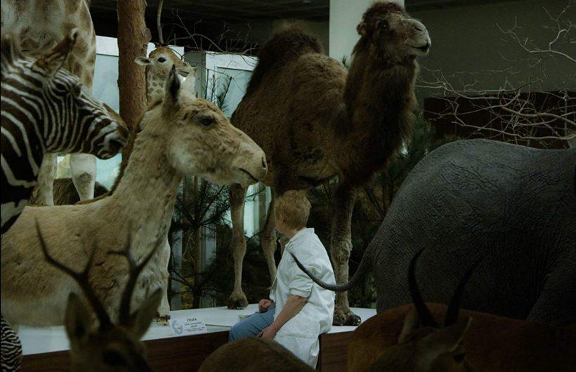 21ο Φεστιβάλ Ντοκιμαντέρ: «Animus Animalis (a story about People, Animals and Things)»